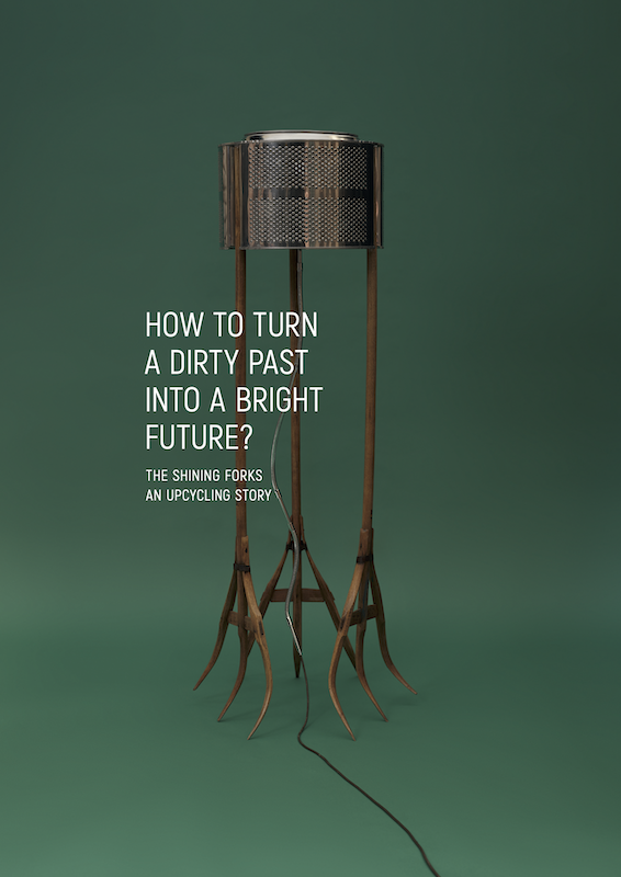 Book cover: Shining Forks